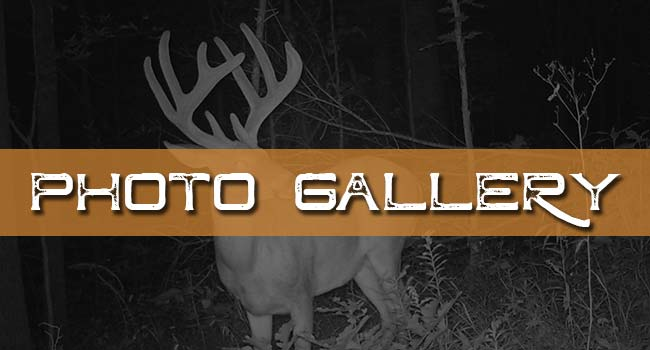 Illinois Ohio Valley Trophy Hunt  Photo Galleries